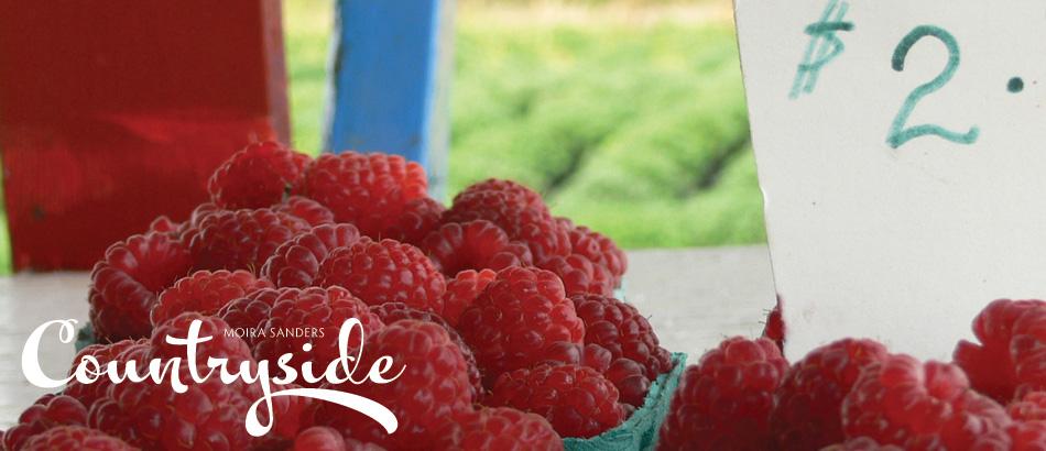 Mmmmm... raspberries.